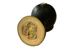 Gem squash is a common Soutrh African squash variety that is safe for African grey parrots to eat
