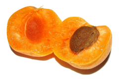 Apricot pips can produce toxic cyanide when opened.