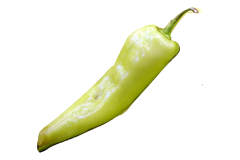 Banana pepper can be safely eaten by African grey parrots