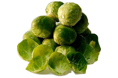 Brussels sprouts like these are a good and safe food source for grey parrots