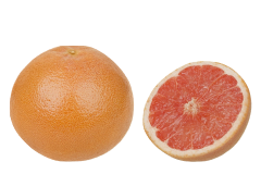 Grapefruit is safe to offer to greys in limited quantity