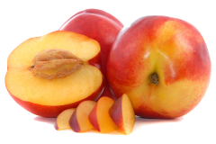 Nectarine pips can produce cyanide and should be removed before feeding the fruit to parrots