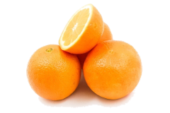 Orange and other citrus fruits may be fed to parrots in moderation