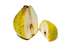 Pear seeds can produce toxic cyanide and should be removed before feeding pear to your parrot.