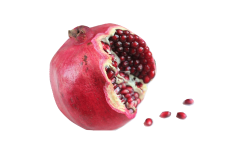 Pomegranate is a safe food that your African grey can eat