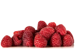Raspberry is a safe food to offer to your pet grey parrot