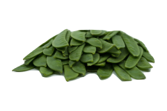 Snow peas are a food that can be safely fed to African grey parrots